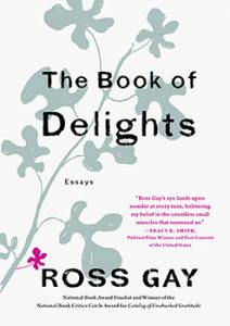 The Book of Delights book cover